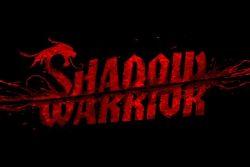 Shadow Warrior / Análisis (2013 – PC, 2014 – XBOX ONE, PS4)